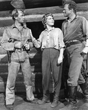 Buy Alan Ladd, Jean Arthur, Van Heflin (Shane) at Art.com