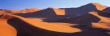 Namib Desert  Nambia  Africa