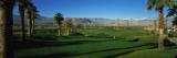 Golf Course  Desert Springs  California  USA