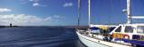 Avalon  Santa Catalina Island  California  USA