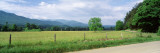 Road Along a Grass Field  Cades Cove  Great Smoky Mountains National Park  Tennessee  USA