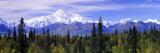 Alaska Range  Denali National Park  Alaska  USA