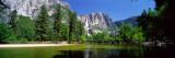 Yosemite Falls  Yosemite National Park  California  USA
