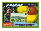 Appleton Brand Apples