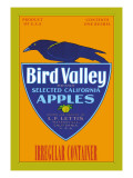 Bird Valley Brand Apples