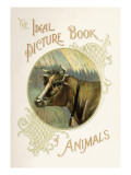 The Ideal Picture Book of Animals