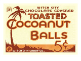 Toasted Cocoanut Balls