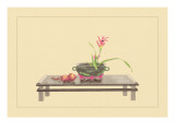 Daylily and Pomegranate