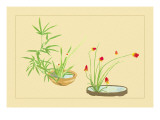 Bamboo  Narcissus  and Lily