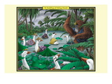 A Paddling of Peking Ducks