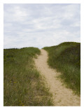 Sandy Beach Path over a Grassy Hill