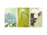 Eastern Floral Triptych