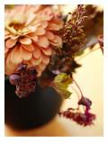 Spring Floral Medley Coral