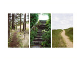 Many Paths Triptych