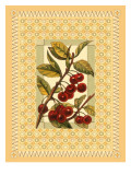 Cherries on Patterned Background