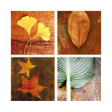 Leaves Arrangement Four Patch