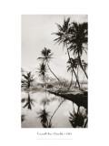 Coco Palms  Honolulu  1935