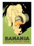 Banani Exquis Dejeuner Sucre
