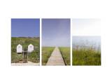 Beach Path Triptych