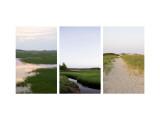 Coastal Streams Triptych