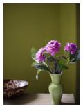 Olive Ambiance  Plum Dahlias
