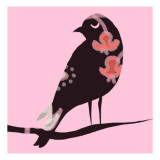Brown Bird on Pink