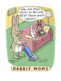 Rabbit Moms
