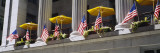 American Flags in a Row  New York  USA