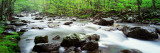 Water Flowing over Rocks  Little Pigeon River  Great Smoky Mountains National Park  Tennessee  USA