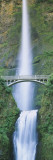 Bridge near a Waterfall  Multnomah Falls  Benson Bridge  Oregon  USA