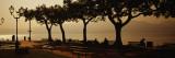 Benches in a Park  Torri del Benaco  Lake Garda  Italy