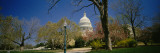 Formal Garden in Front of a Government Building  Us Capitol Building  Washington DC  USA