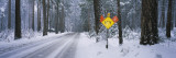 Signboard on a Snow Covered Roadside  Yosemite National Park  California  USA