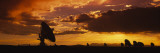 Silhouette of Array Radio Telescopes  National Radio Astronomy Observatory  New Mexico  USA