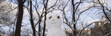 Snowman in Central Park  New York  USA