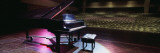 Grand Piano on a Concert Hall Stage  University of Hawaii  Hilo  Hawaii  USA