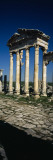 Old Ruins of a Built Structure  Entrance Columns  Apamea  Syria