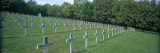 Rows of Crosses on Graves in a Cemetery  Hartmannsweilerkopf  Alsace  France
