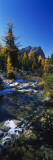 Mount Assiniboine Provincial Park  Border of Alberta and British Columbia  Canada