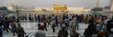 Crowd at Golden Temple  Amritsar  Punjab  India
