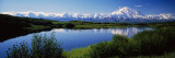 Mount McKinley and Alaska Range  Lake Reflection  Green Hills  Denali National Park  Alaska  USA