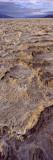 Textured Salt Flats  Death Valley National Park  California  USA