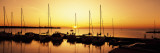 Silhouette of Boats in the Sea  Egg Harbor  Door County  Wisconsin  USA