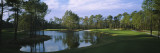 Pond on a Golf Course  Kilmarlic Golf Club  Outer Banks  North Carolina  USA