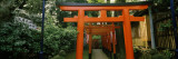 Torii Gates in a Park  Ueno Park  Taito  Tokyo Prefecture  Kanto Region  Japan