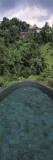 View of a Swimming Pool  Ubud Hanging Gardens  Ayung Valley  Ubud  Bali  Indonesia