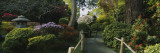 Plants in a Garden  Japanese Tea Garden  San Francisco  California  USA