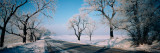 Road Passing Through Winter Fields  Illinois  USA