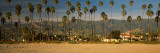 Palm Trees on the Beach  Santa Barbara  California  USA
