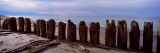 Wood Pilings on the Beach  Dungeness Spit  Olympic Peninsula  Washington State  USA